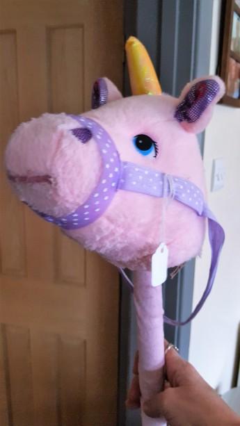 Hobby Unicorn.jpg