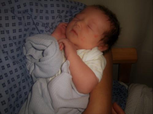 elysia birth 2.jpg